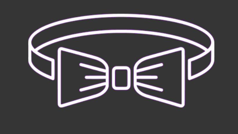 Bonawentura Logo